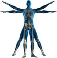 rehabilitacion-del-cuerpo